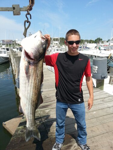 montauk bass great